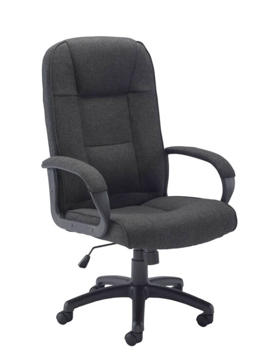 Executive Task Chair Fabric